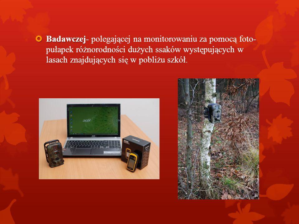 Badawczej- polegającej na monitorowaniu za pomocą foto- pułapek różnorodności dużych ssaków występujących w lasach znajdujących się w pobliżu szkół.