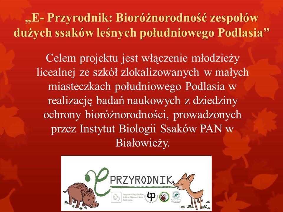 """""""E- Przyrodnik: Bioróżnorodność zespołów dużych ssaków leśnych południowego Podlasia"""