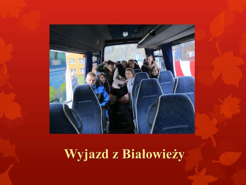 Wyjazd z Białowieży