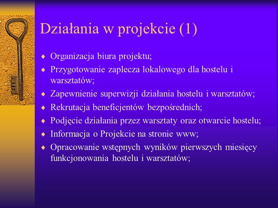 Działania w projekcie (1)