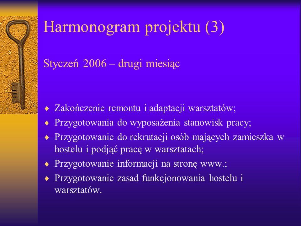 Harmonogram projektu (3) Styczeń 2006 – drugi miesiąc