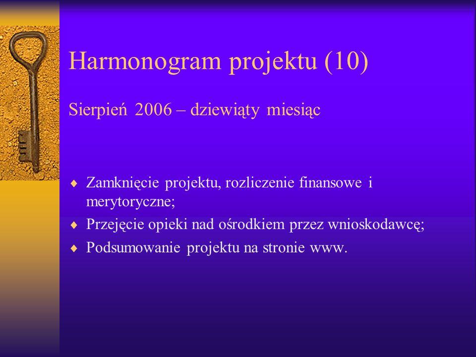 Harmonogram projektu (10) Sierpień 2006 – dziewiąty miesiąc