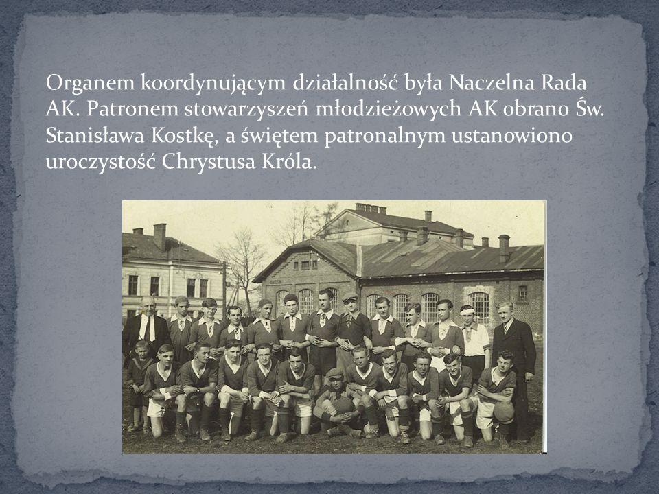 Organem koordynującym działalność była Naczelna Rada AK