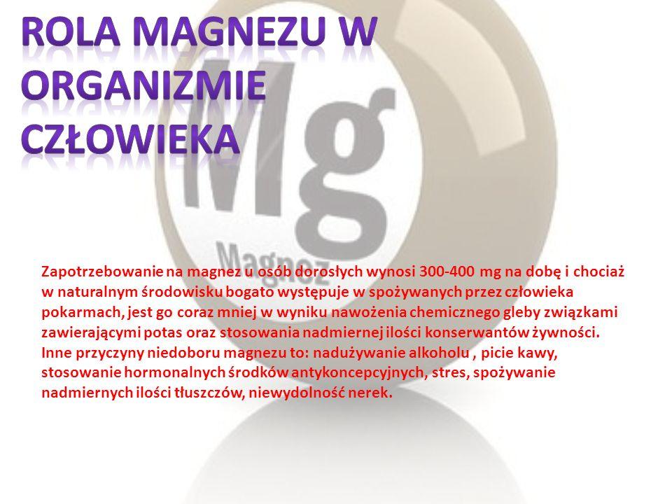 Rola magnezu w organizmie człowieka