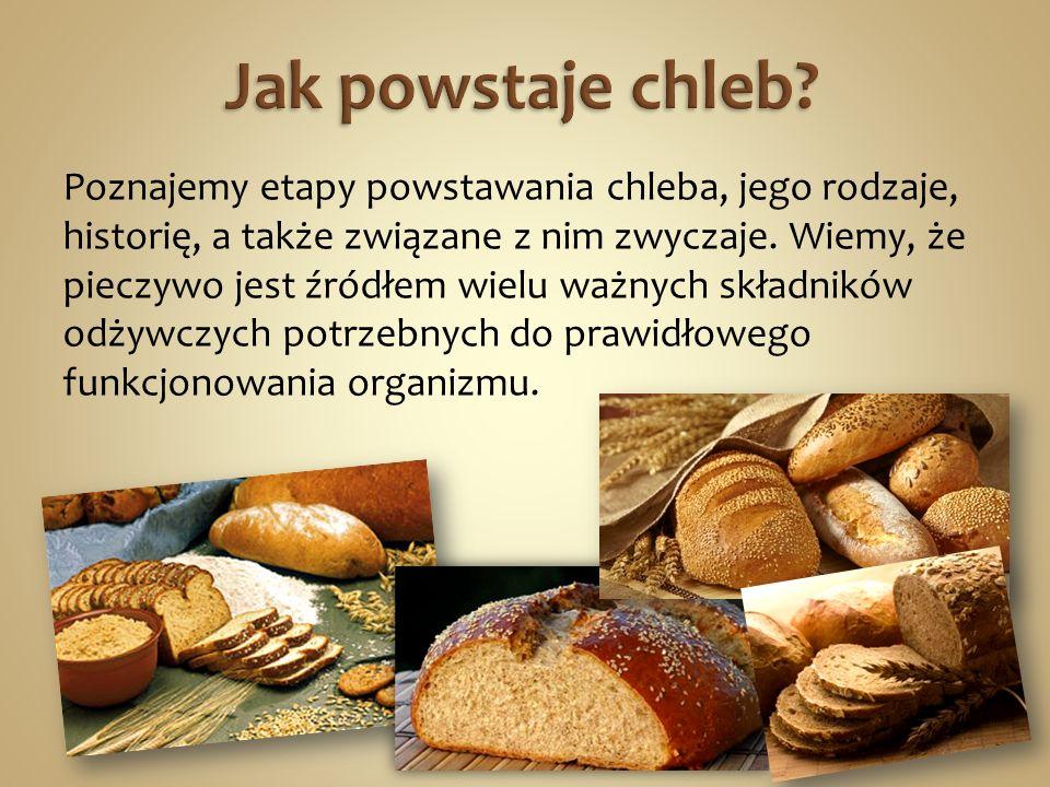 Jak powstaje chleb
