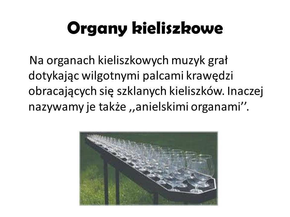 Organy kieliszkowe