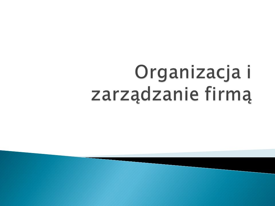 Organizacja i zarządzanie firmą