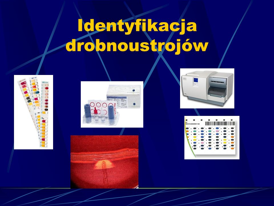 Identyfikacja drobnoustrojów