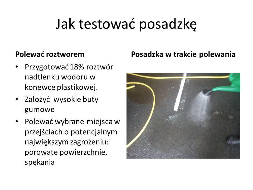 Jak testować posadzkę Polewać roztworem Posadzka w trakcie polewania