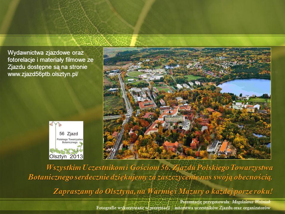 Zapraszamy do Olsztyna, na Warmię i Mazury o każdej porze roku!