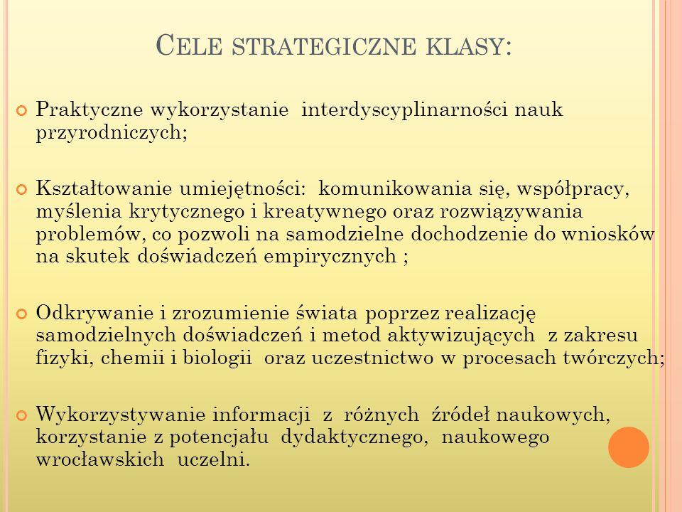 Cele strategiczne klasy: