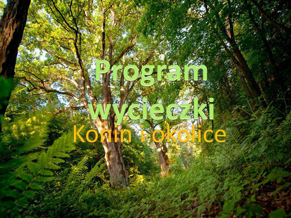 Program wycieczki Konin i okolice