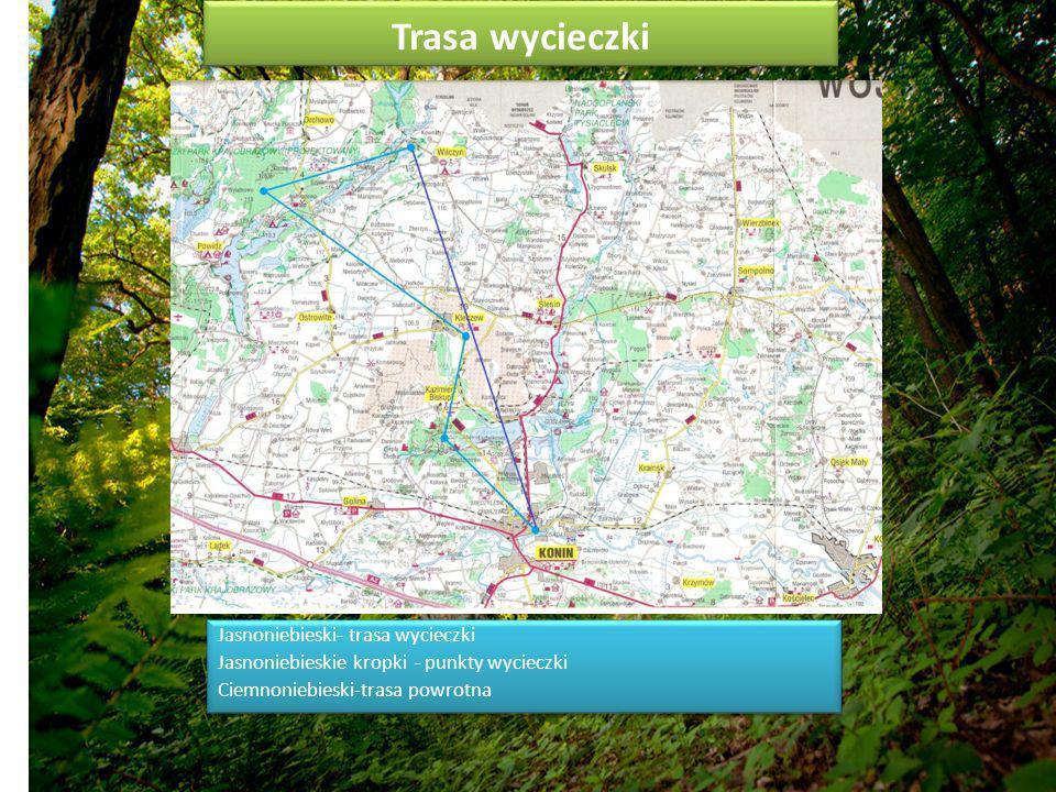 Trasa wycieczki Jasnoniebieski- trasa wycieczki