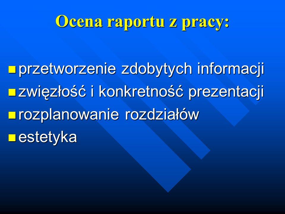 Ocena raportu z pracy: przetworzenie zdobytych informacji