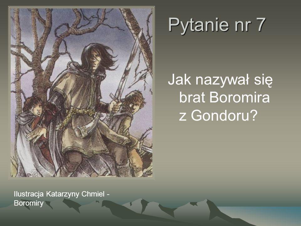 Pytanie nr 7 Jak nazywał się brat Boromira z Gondoru