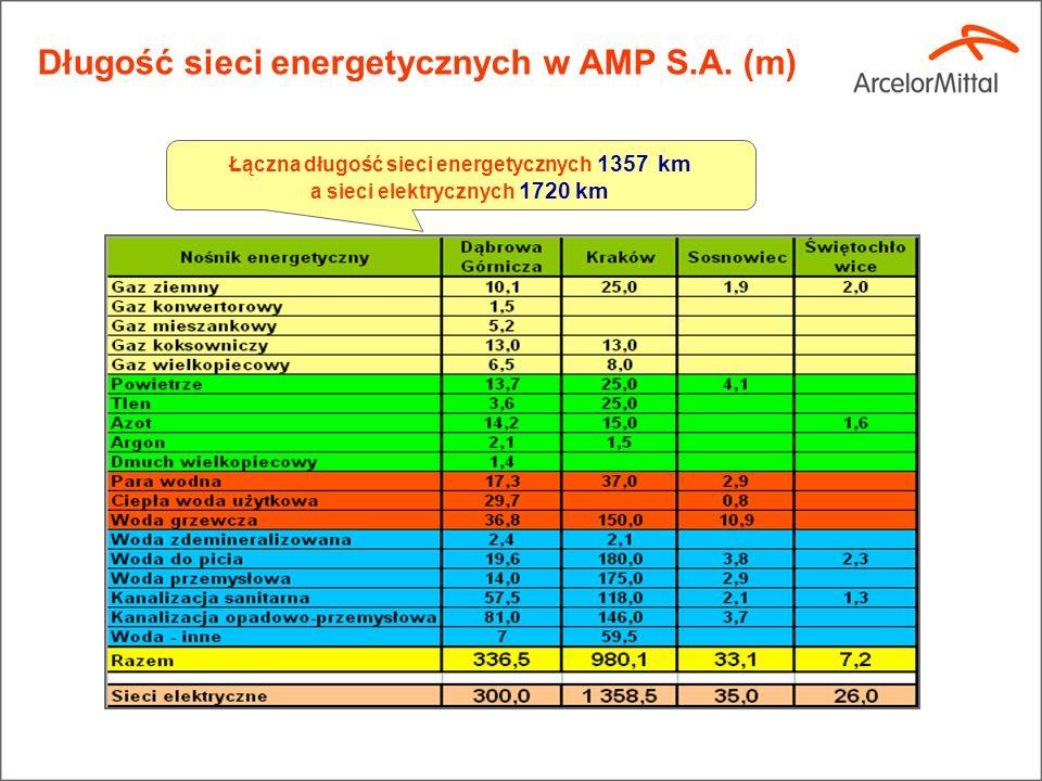 Długość sieci energetycznych w AMP S.A. (m)