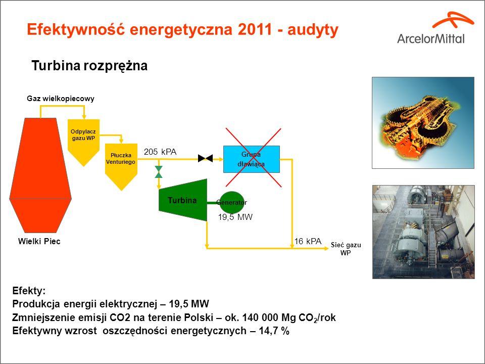 Efektywność energetyczna 2011 - audyty