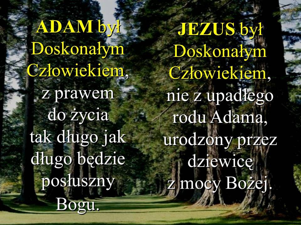 JEZUS był Doskonałym Człowiekiem, nie z upadłego rodu Adama, urodzony przez dziewicę z mocy Bożej.