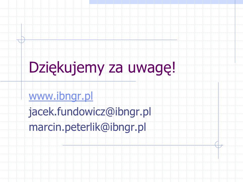 www.ibngr.pl jacek.fundowicz@ibngr.pl marcin.peterlik@ibngr.pl