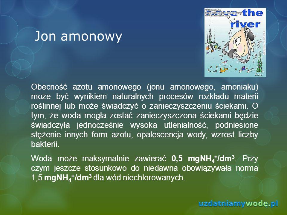 Jon amonowy