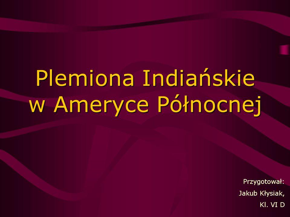 Plemiona Indiańskie w Ameryce Północnej