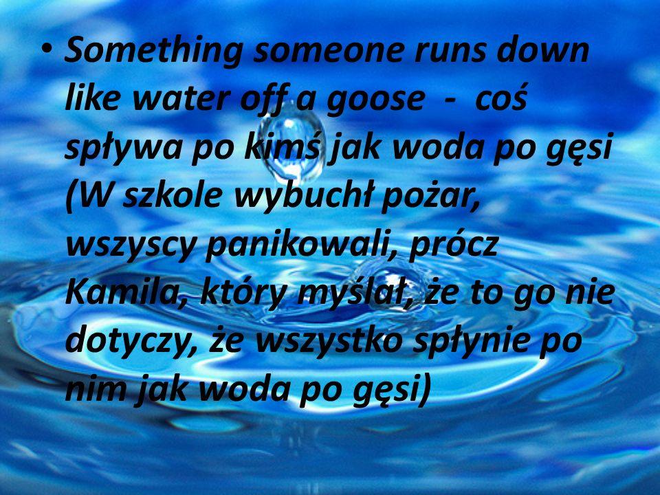 Something someone runs down like water off a goose - coś spływa po kimś jak woda po gęsi (W szkole wybuchł pożar, wszyscy panikowali, prócz Kamila, który myślał, że to go nie dotyczy, że wszystko spłynie po nim jak woda po gęsi)