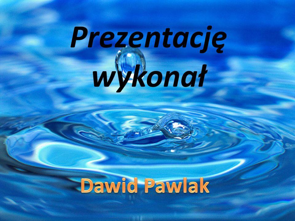 Prezentację wykonał Dawid Pawlak