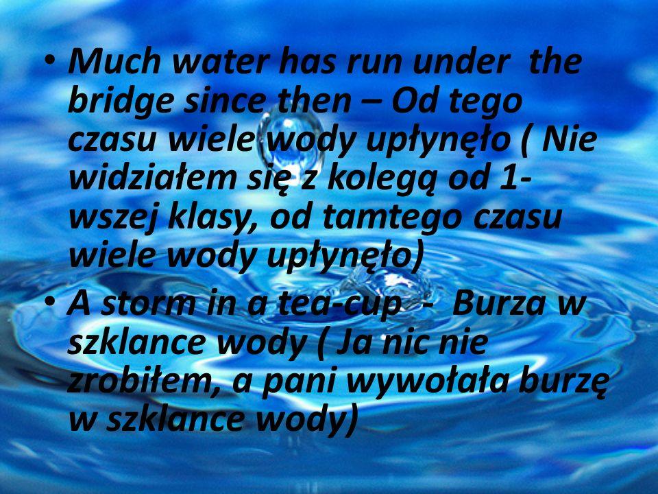 Much water has run under the bridge since then – Od tego czasu wiele wody upłynęło ( Nie widziałem się z kolegą od 1-wszej klasy, od tamtego czasu wiele wody upłynęło)