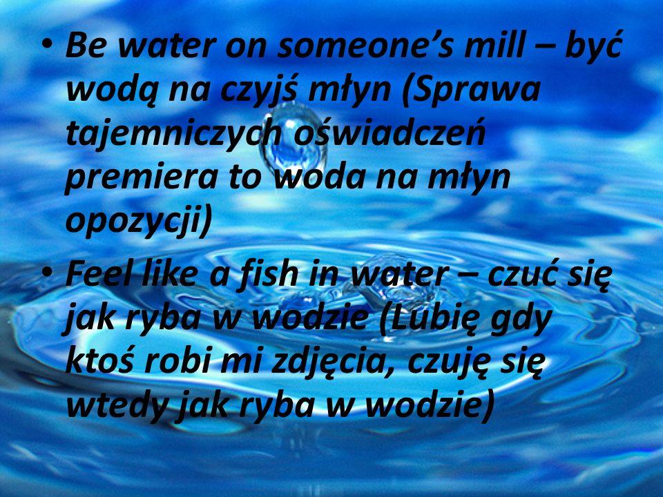 Be water on someone's mill – być wodą na czyjś młyn (Sprawa tajemniczych oświadczeń premiera to woda na młyn opozycji)