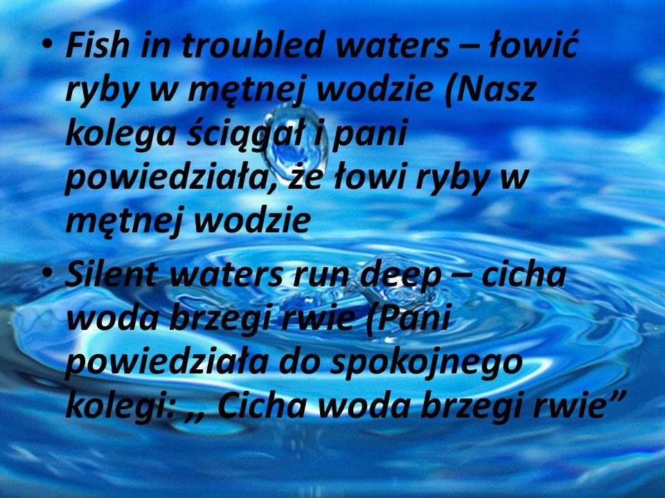 Fish in troubled waters – łowić ryby w mętnej wodzie (Nasz kolega ściągał i pani powiedziała, że łowi ryby w mętnej wodzie