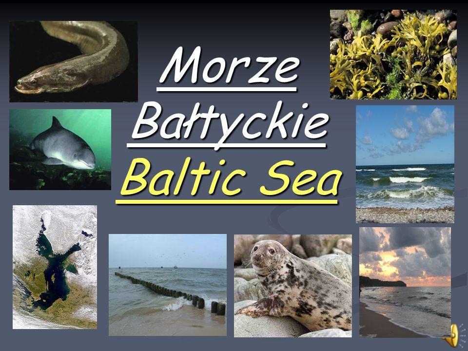 Morze Bałtyckie Baltic Sea