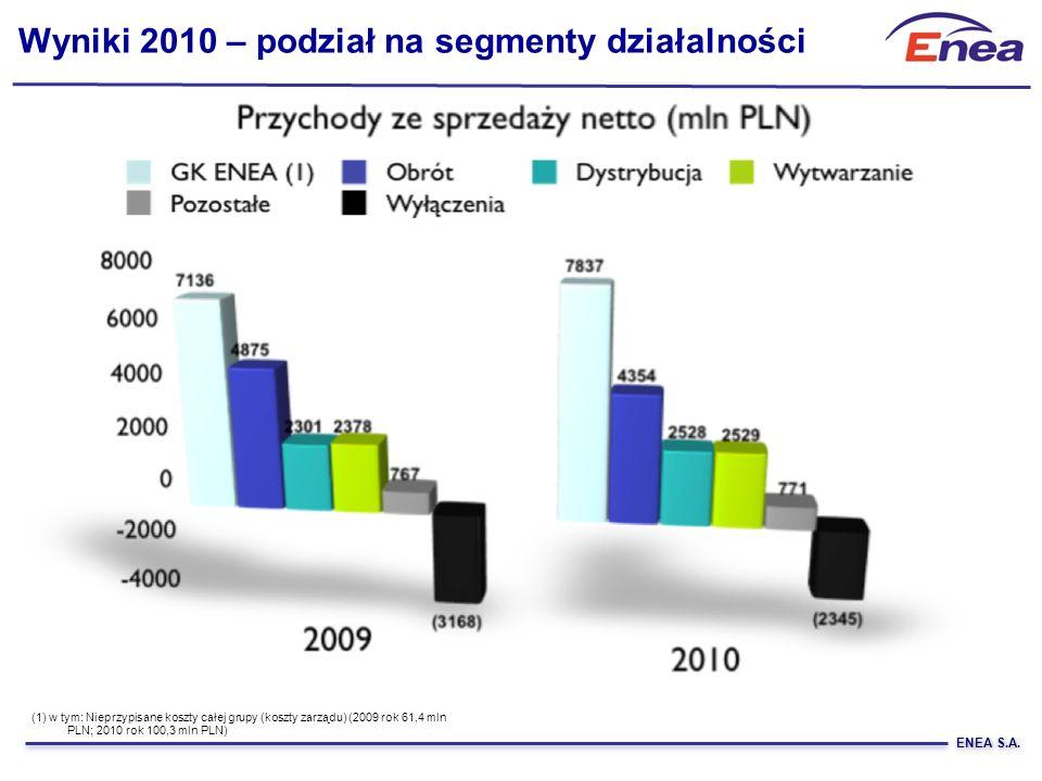 Wyniki 2010 – podział na segmenty działalności