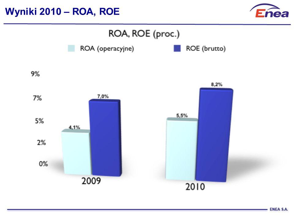 Wyniki 2010 – ROA, ROE ENEA S.A.