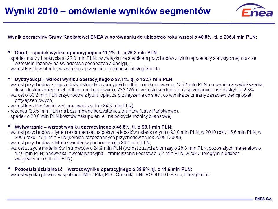 Wyniki 2010 – omówienie wyników segmentów