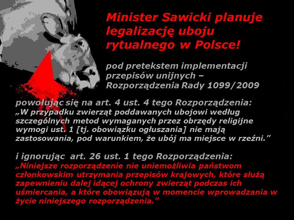 Minister Sawicki planuje legalizację uboju rytualnego w Polsce!