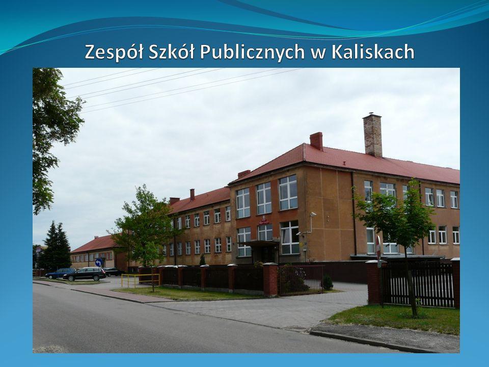 Zespół Szkół Publicznych w Kaliskach
