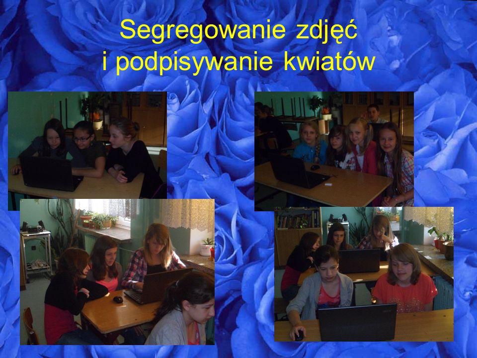 Segregowanie zdjęć i podpisywanie kwiatów