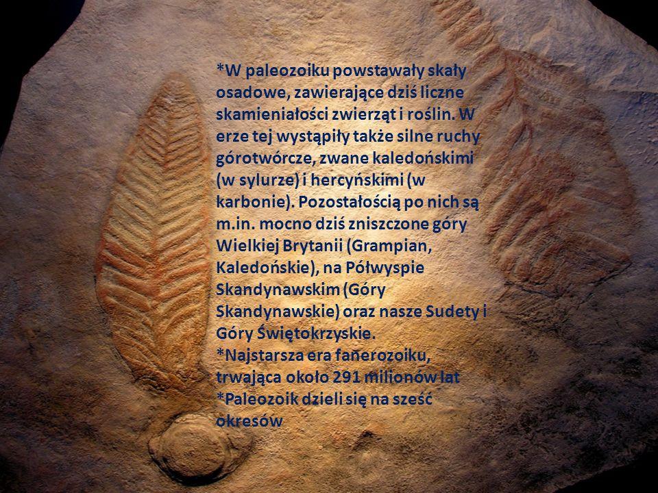 *W paleozoiku powstawały skały osadowe, zawierające dziś liczne skamieniałości zwierząt i roślin. W erze tej wystąpiły także silne ruchy górotwórcze, zwane kaledońskimi (w sylurze) i hercyńskimi (w karbonie). Pozostałością po nich są m.in. mocno dziś zniszczone góry Wielkiej Brytanii (Grampian, Kaledońskie), na Półwyspie Skandynawskim (Góry Skandynawskie) oraz nasze Sudety i Góry Świętokrzyskie.