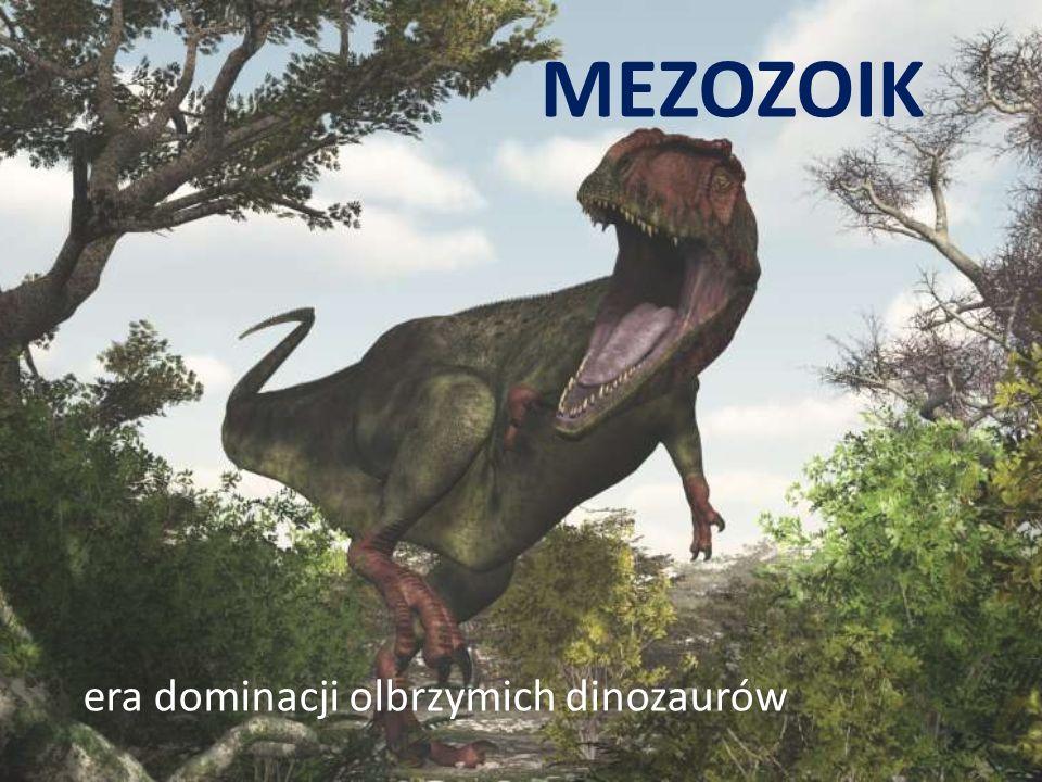 MEZOZOIK era dominacji olbrzymich dinozaurów
