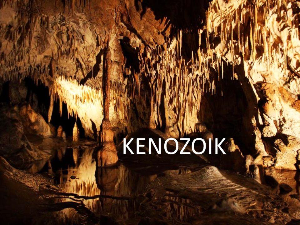 KENOZOIK