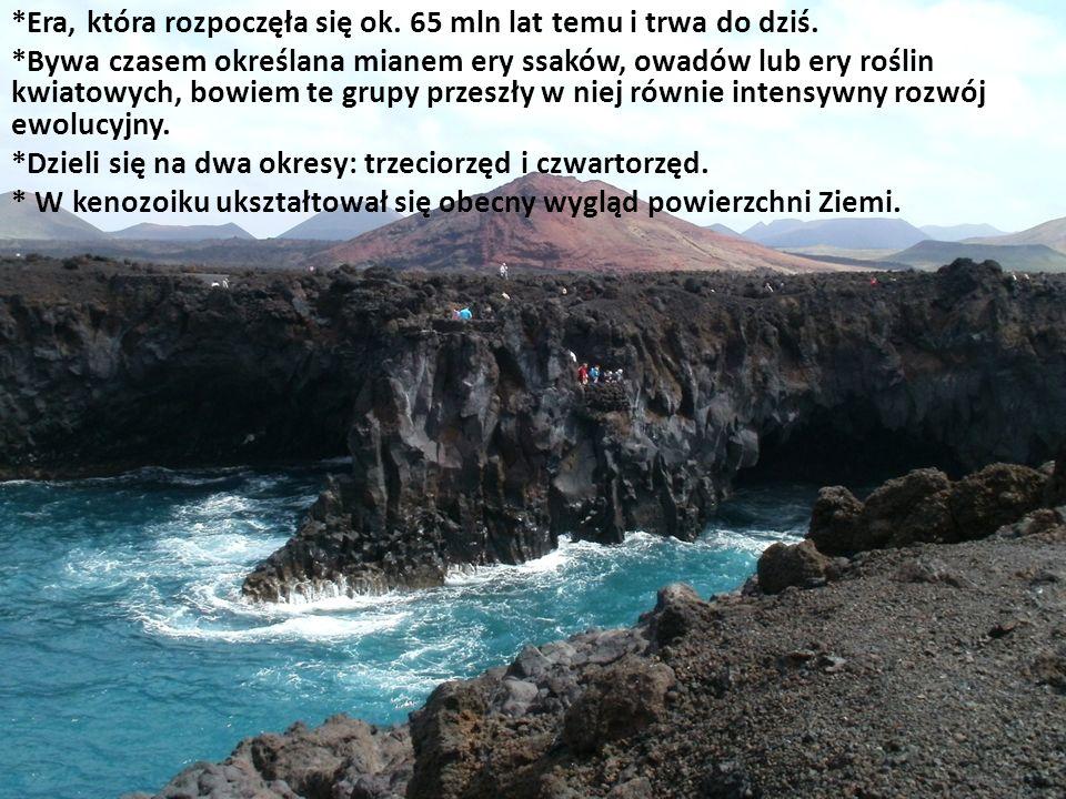 *Era, która rozpoczęła się ok. 65 mln lat temu i trwa do dziś.