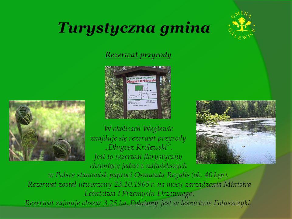 Turystyczna gmina Rezerwat przyrody W okolicach Węglewic