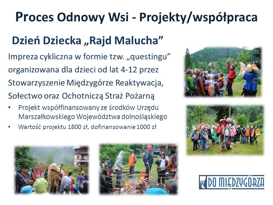 Proces Odnowy Wsi - Projekty/współpraca