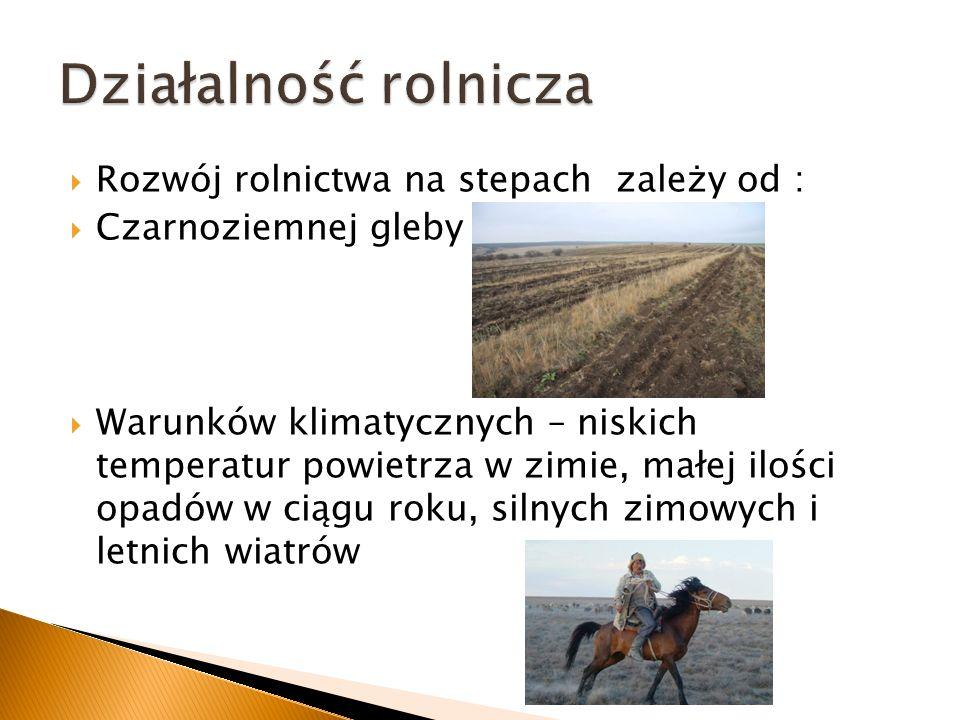 Działalność rolnicza Rozwój rolnictwa na stepach zależy od :