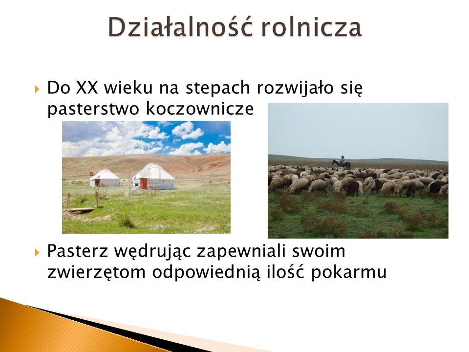 Działalność rolnicza Do XX wieku na stepach rozwijało się pasterstwo koczownicze.