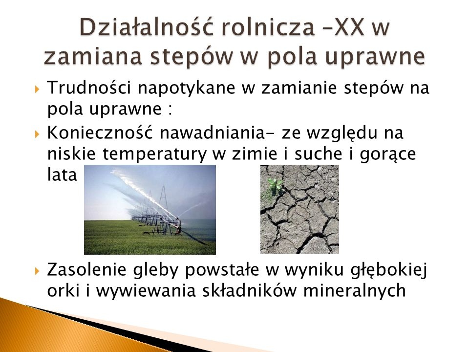 Działalność rolnicza –XX w zamiana stepów w pola uprawne