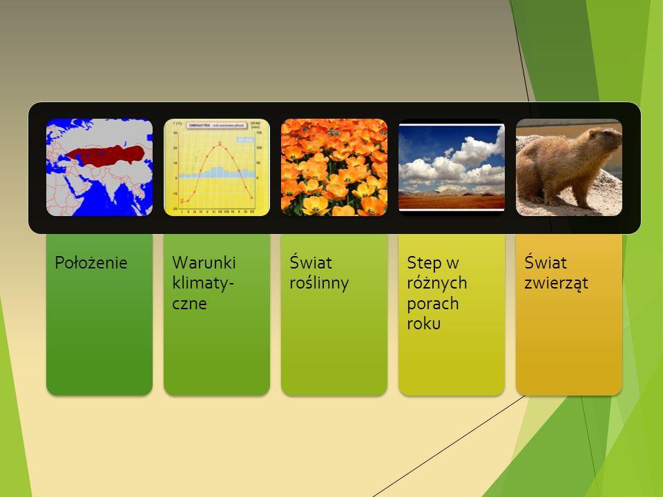 Położenie Warunki klimaty- czne Świat roślinny Step w różnych porach roku Świat zwierząt