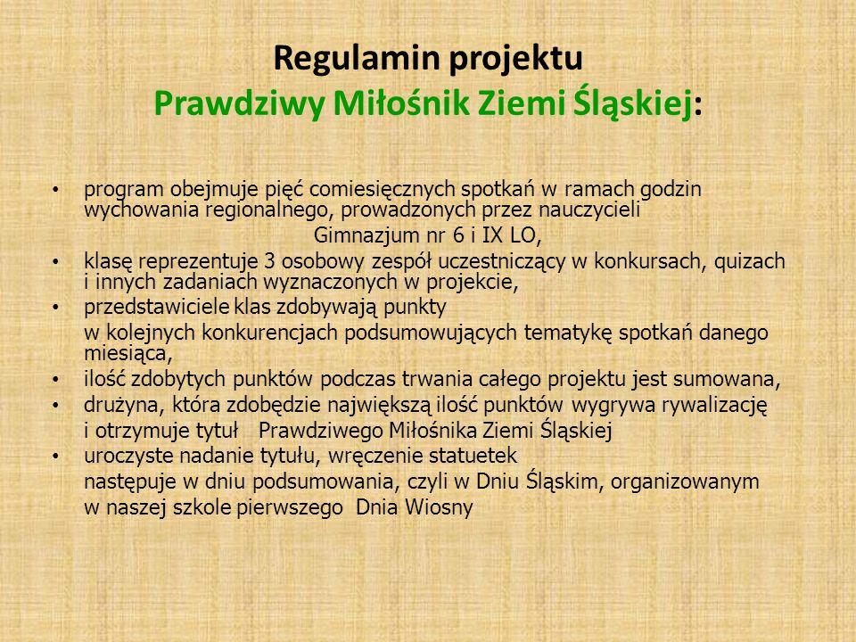 Regulamin projektu Prawdziwy Miłośnik Ziemi Śląskiej: