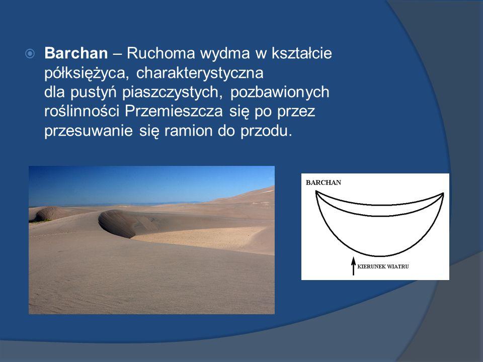 Barchan – Ruchoma wydma w kształcie półksiężyca, charakterystyczna dla pustyń piaszczystych, pozbawionych roślinności Przemieszcza się po przez przesuwanie się ramion do przodu.