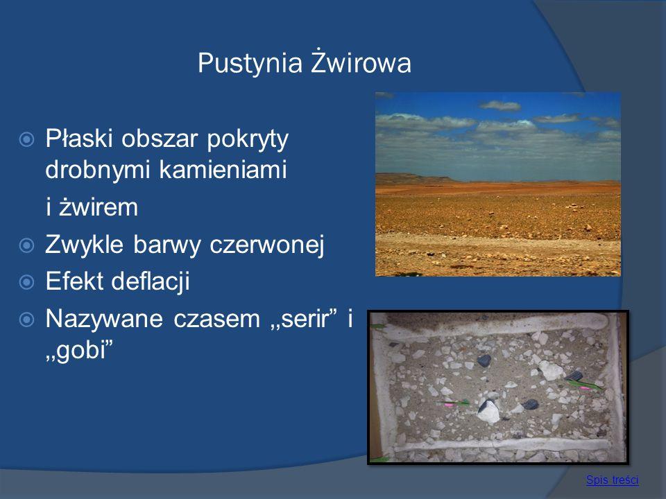 Pustynia Żwirowa Płaski obszar pokryty drobnymi kamieniami i żwirem